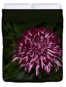 A Happy Birthday Wish With An Elegant Maroon And Pink Mum Duvet Cover