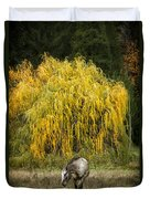 A Horse And A Willow Tree Duvet Cover