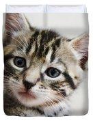 A Kittens Helping Hand Duvet Cover