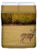 A Large Whitetail Buck Stairs Duvet Cover