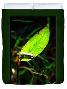 A Leaf... Duvet Cover