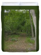 A Leisurely Stroll Through The Putnam County Veteran Memorial Park Woods Duvet Cover