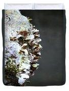 A Lichen Abstract 2013 Duvet Cover