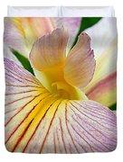 Iris  Metamorphosis Of The Iris Spring Equinox  Duvet Cover