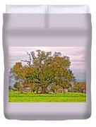 A Mighty Oak Duvet Cover