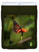 A Monarch Butterfly 2 Duvet Cover