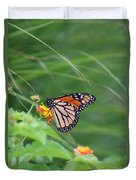 A Monarch Butterfly At Rest Duvet Cover