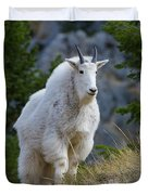 A Mountain Goat Stands On A Grassy Duvet Cover