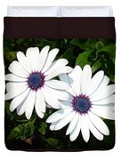 A Pair Of White African Daisies Duvet Cover