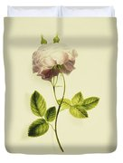 A Pink Rose Duvet Cover by James Holland