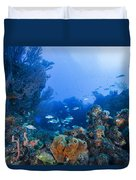 A Quiet Underwater Day Duvet Cover