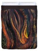 A Radiant Heart Light Duvet Cover by Daina White