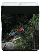 A Red Green And Blue Macaw On A Branch In The Jurong Bird Park Duvet Cover