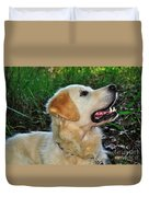 A Retriever's Loving Glance Duvet Cover