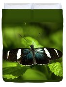 A Sara Longwing Butterfly Heliconius Duvet Cover
