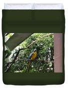 A Single Macaw Bird On A Branch Inside The Jurong Bird Park Duvet Cover