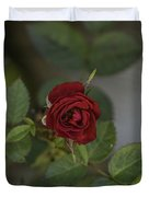 A Single Red Rose Duvet Cover