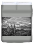 A Sonoran Winter Day In Black And White  Duvet Cover
