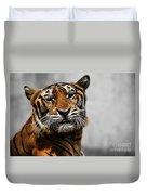 A Tiger's Look Duvet Cover