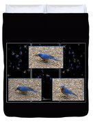 A Typical Eastern Bluebird's Lunch - Featured In Comfortable Art Group Duvet Cover