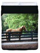 A Very Beautiful Hilton Head Island Horse Duvet Cover