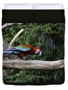 A Very Colorful And Bright Macaw Bird Perched On A Branch Duvet Cover