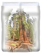 A Walk Among The Giant Sequoias Duvet Cover