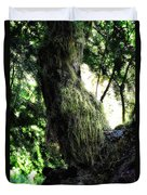 A Walk In The Woods 6 Duvet Cover