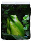 A Walk In The Woods1 Duvet Cover