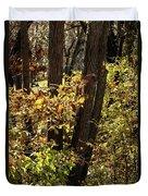 A Walk Through The Woods - 1 Duvet Cover