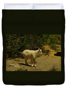 A Young Mountain Goat Duvet Cover