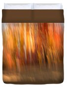 Abstract Fall 6 Duvet Cover