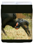 Abyssinian Ground Hornbill Duvet Cover