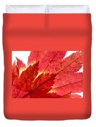 Acer From Beneath Duvet Cover