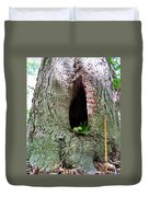 Acorns And Incense Duvet Cover