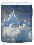 Adelie Penguins On Iceberg Antarctica Duvet Cover