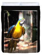 Adopted Macaw - Rescued Parrot Duvet Cover