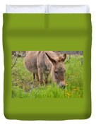 Adorable Mini-burro Duvet Cover