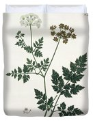 Aethusa Cynapium From Phytographie Duvet Cover