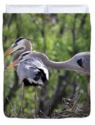 Affectionate Great Blue Heron Mates Duvet Cover