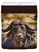 African Buffalo V3 Duvet Cover