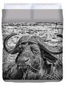 African Buffalo V4 Duvet Cover