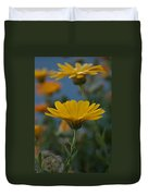 African Daisies Duvet Cover