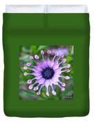 African Daisy - Square Format Duvet Cover