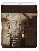 African Elephant Close Up Amboseli Duvet Cover