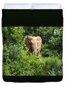 African Elephant Eating In The Shrubs Duvet Cover
