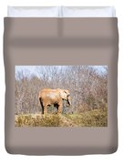 African Elephant On A Hill Duvet Cover