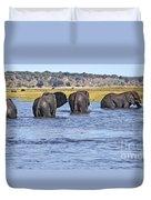 African Elephants Crossing Chobe River  Botswana Duvet Cover