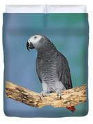 African Gray Parrot Duvet Cover