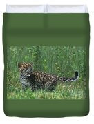 African Leopard Cub In Tall Grass Endangered Species Duvet Cover